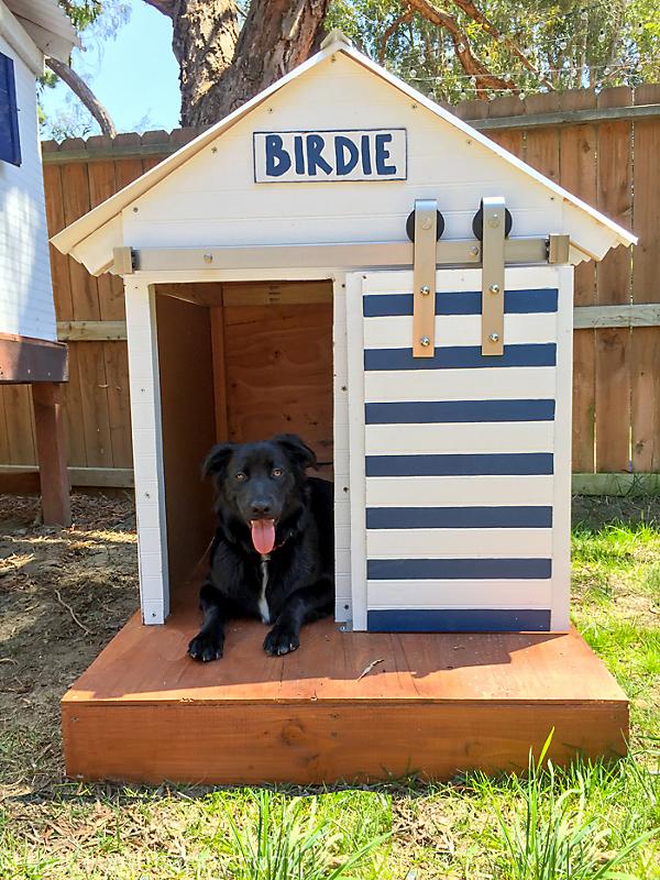 Barn Door Dog House