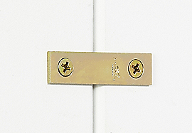 Vignette Image for Mending Brace