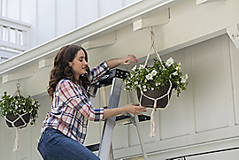 Vignette Image for Ceiling Hooks